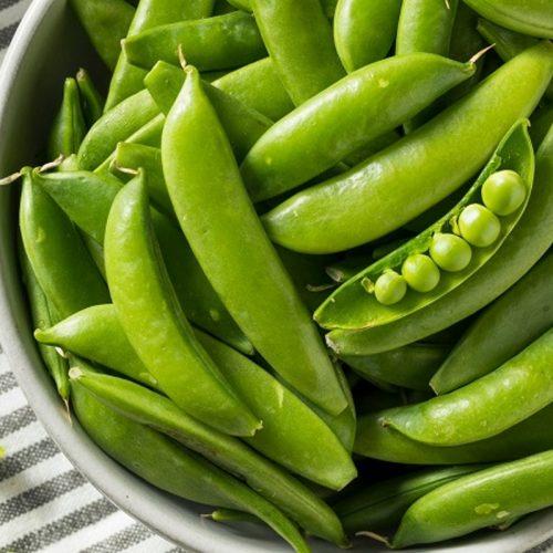 Best Vegetables for Vertical Gardening