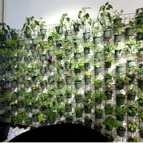 What is Vertical Gardening?