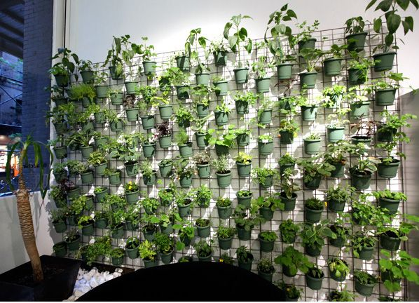 what is vertical gardening